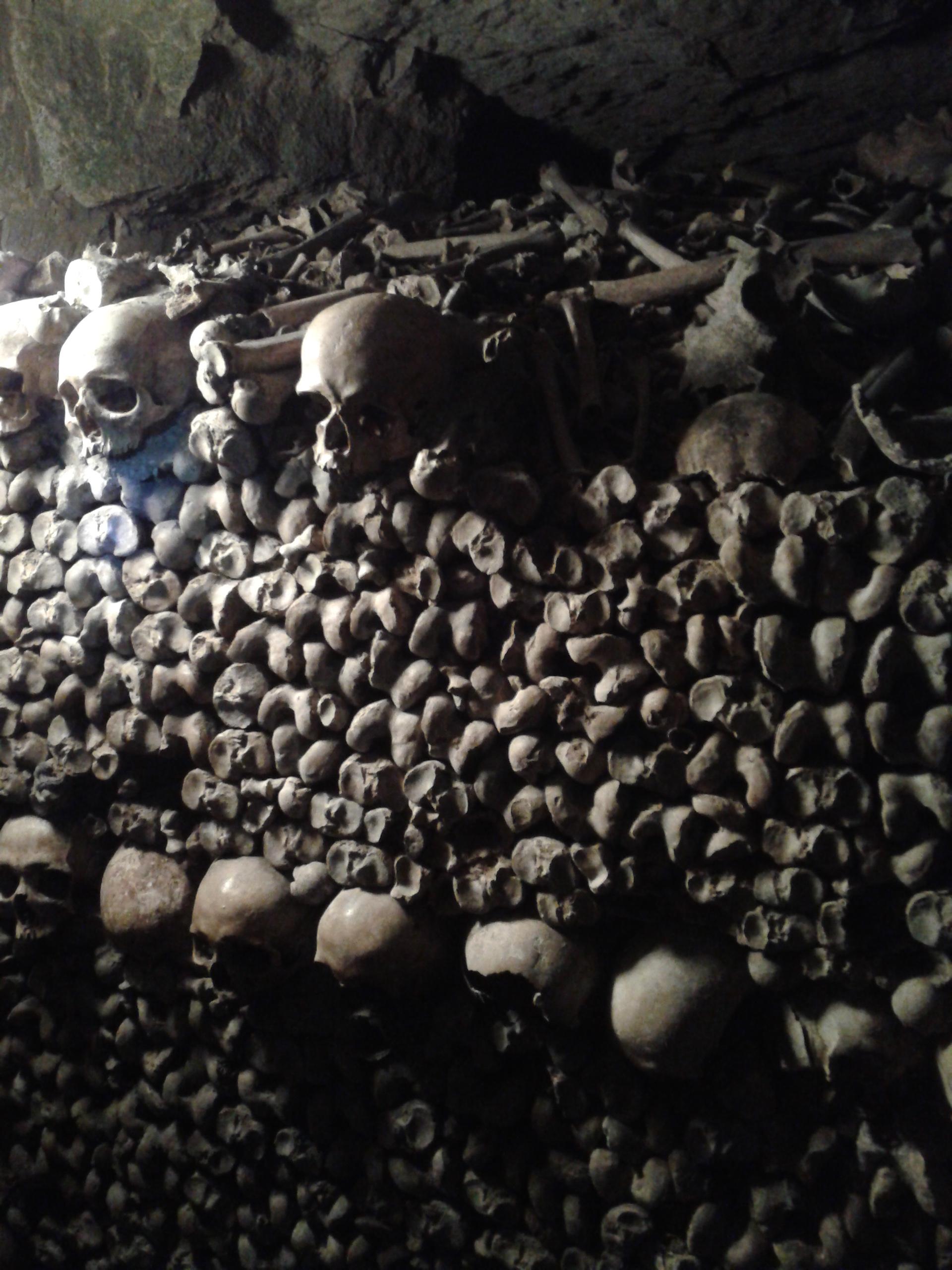 rows n rows of bones!